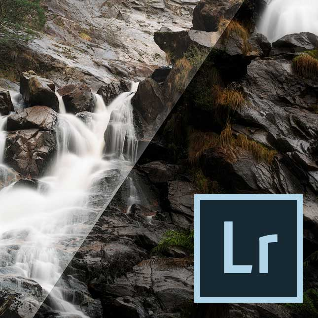 One to one online Photo editing lessons offered by wild artistic