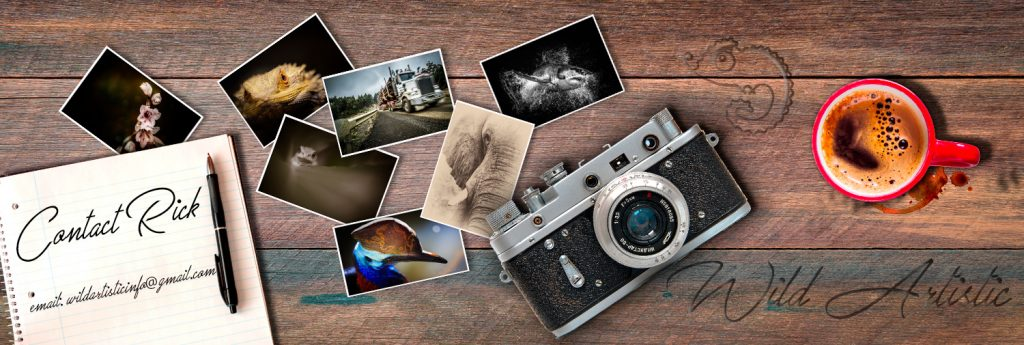 Banner image for contact us page shows a notepad, camera,coffee mug and some photographs on a wooden table